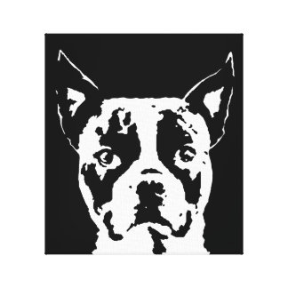 Schwarzer Boston-Terrier u. Weiß wickelten Leinwanddruck