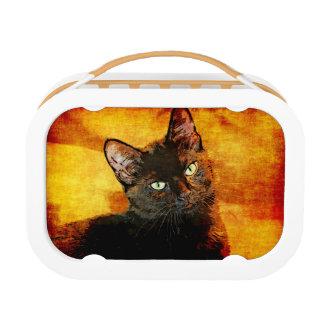 SCHWARZER CAT-OLIVE BROTDOSE