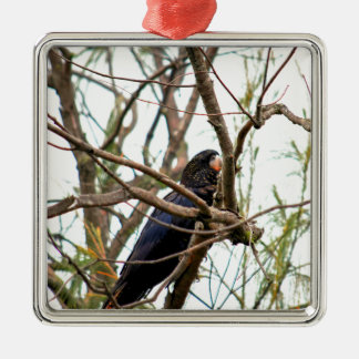 SCHWARZER COCKATOO QUEENSLAND AUSTRALIEN SILBERNES ORNAMENT