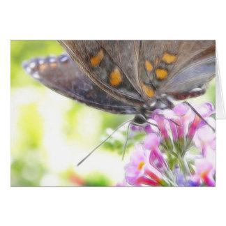 Schwarzer Frack-Schmetterling auf Buddleia Bush Karte