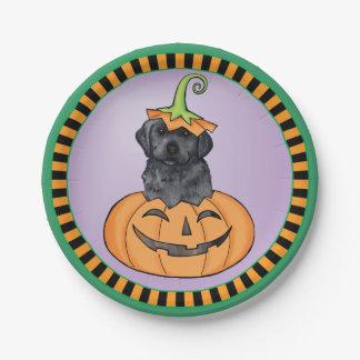 Schwarzer Labrador Halloweens Pappteller