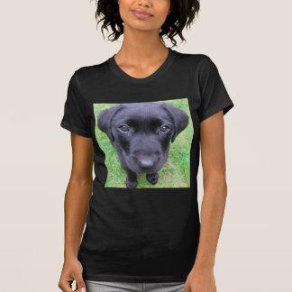 Schwarzer Labrador-Hund auf Gras T-Shirt