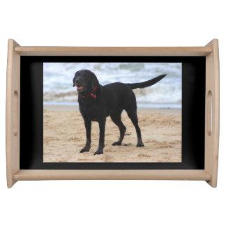 Schwarzer Labrador-Hund Tablett