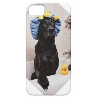 Schwarzer Labrador-Labrador-Hundelustige Bad-Zeit Schutzhülle Fürs iPhone 5