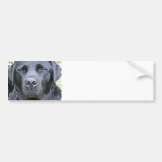 Schwarzer Labrador-Retriever-HundeAutoaufkleber Autosticker