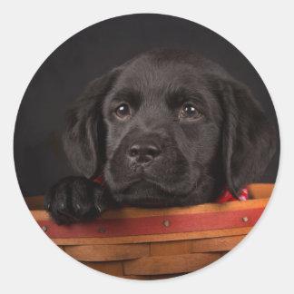Schwarzer labrador retriever-Welpe in einem Korb Runder Aufkleber