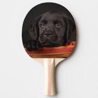 Schwarzer labrador retriever-Welpe in einem Korb Tischtennis Schläger