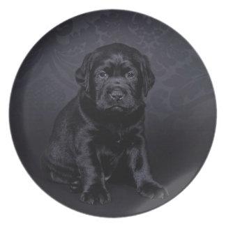 Schwarzer Labrador-Welpe Teller