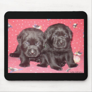 Schwarzer Labrador-Welpen-Magnet Mousepad