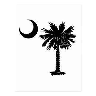 Schwarzer Palmetto Postkarte