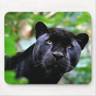 Schwarzer Panther-Makro Mousepad
