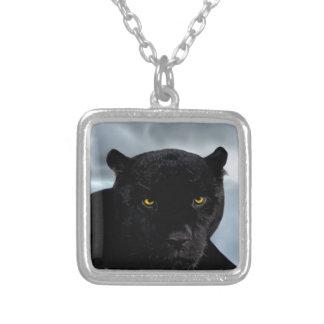 Schwarzer PantherPanthera Versilberte Kette