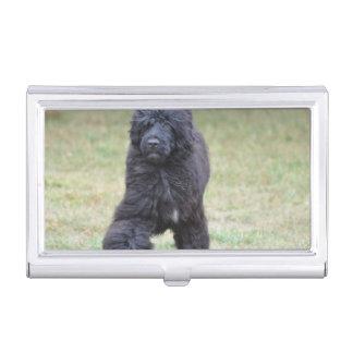 Schwarzer portugiesischer Wasser-Hund Visitenkarten Etui