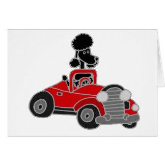 Schwarzer Pudel, der rotes konvertierbares Auto fä Grußkarten