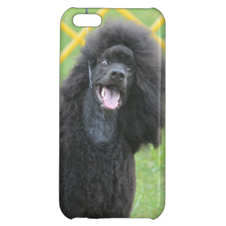 Schwarzer Pudel iPhone 5C Schale