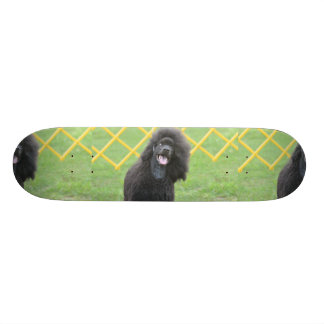 Schwarzer Pudel Personalisiertes Skateboarddeck