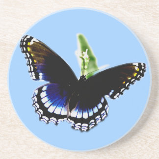 Schwarzer Schmetterling Getränkeuntersetzer