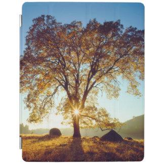 Schwarzer staatlicher Wald der Eichen-| Cleveland, iPad Hülle