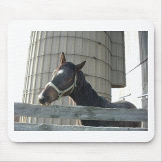 Schwarzer Stallion/Pferd Mauspads