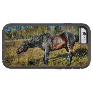 Schwarzer Thoroughbred Percheron, das weg vom Tough Xtreme iPhone 6 Hülle