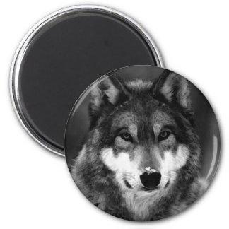 Schwarzer u. weißer Wolf Runder Magnet 5,7 Cm