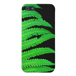 Schwarzer und grüner Farn iPhone 5 Cover