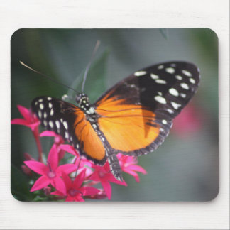Schwarzer und orange gepunkteter Schmetterling 2 Mousepad