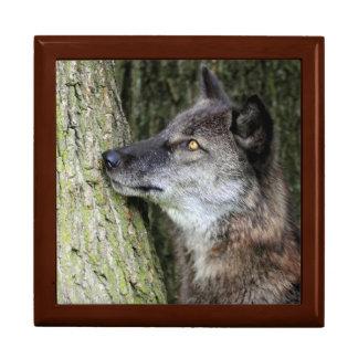 Schwarzer Wolf-Fliesen-Kasten Geschenkbox