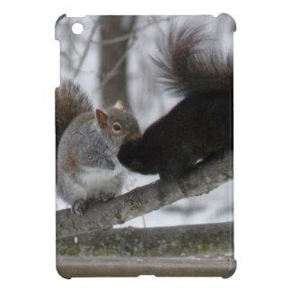 Schwarzes Eichhörnchen iPad Mini Hülle