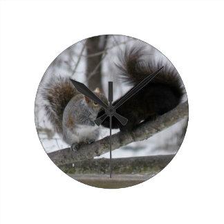 Schwarzes Eichhörnchen Runde Wanduhr