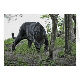 Schwarzes Jaguar, das Karte anpirscht