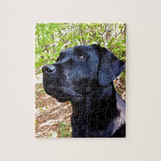 Schwarzes Labrador - behalten Sie oben schauen Puzzle