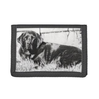 Schwarzes Labrador, das in die Sun-Skizze legt