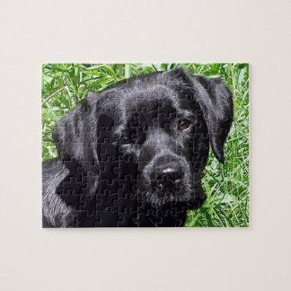 Schwarzes Labrador - Frühlings-Tag Puzzle