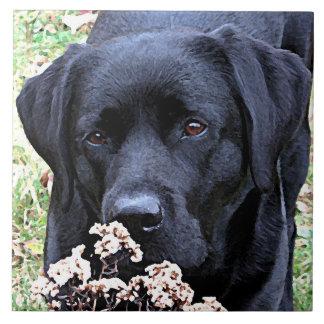 Schwarzes Labrador - nehmen Sie Zeit Keramikfliese