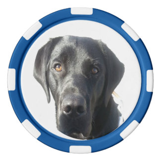 Schwarzes Labrador retriever Pokerchips