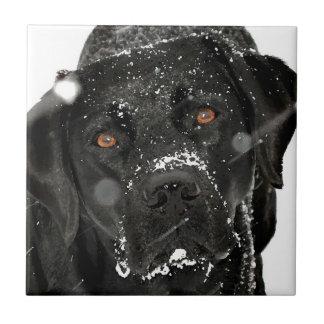 Schwarzes Labrador - Schnee-Kugel Fliese