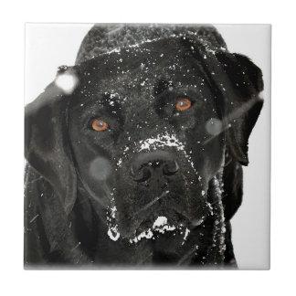 Schwarzes Labrador - Schnee-Kugel Keramikfliese