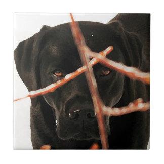 Schwarzes Labrador - Spähen der Niederlassungen Keramikfliese