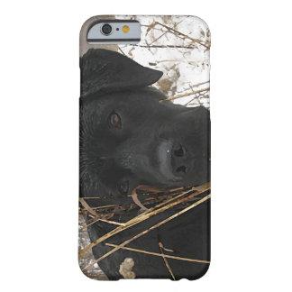 Schwarzes Labrador - Spätsaisonjagd Barely There iPhone 6 Hülle