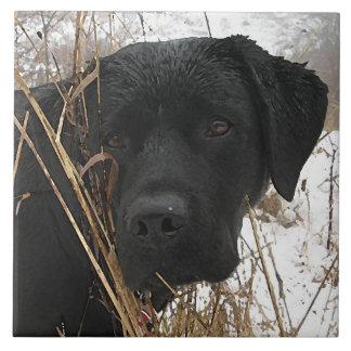 Schwarzes Labrador - Spätsaisonjagd Keramikfliese
