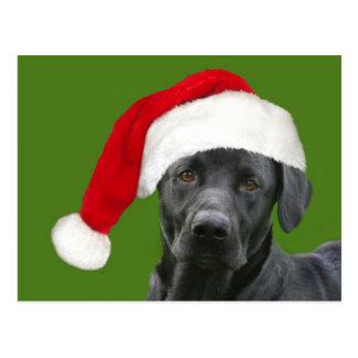 Schwarzes Labrador Weihnachten Postkarte