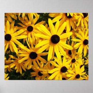 Schwarzes mit Augen Susans mit Blumen Poster