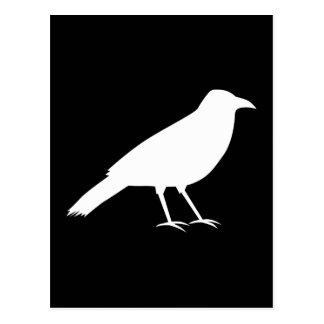 Schwarzes mit einer weißen Krähe Postkarte