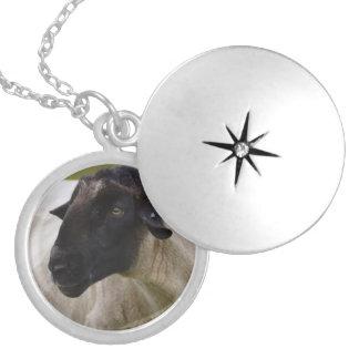 Schwarzes stellte Schafe gegenüber Medaillon