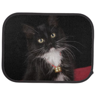 Schwarzes u. weißes kurzhaariges Kätzchen, 2 1/2 Autofußmatte