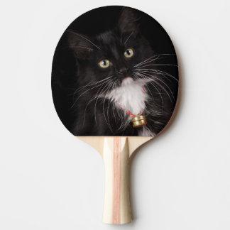 Schwarzes u. weißes kurzhaariges Kätzchen, 2 1/2 Tischtennis Schläger