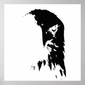 Schwarzes u. weißes Weißkopfseeadler-Plakat Poster