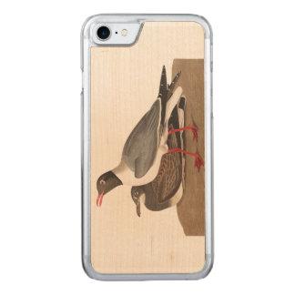 Schwarzköpfige Möve Audubon Platten-314 Carved iPhone 8/7 Hülle
