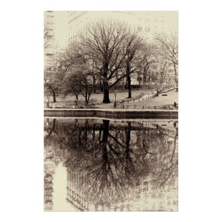 Schwarzweiss-Baum-LandschaftsFoto Poster